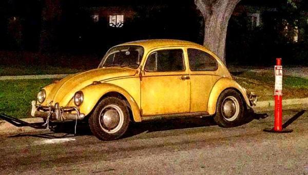 Bumblebee - Beetle