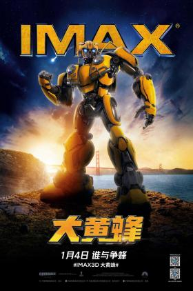 Bumblebee Chinese Poster
