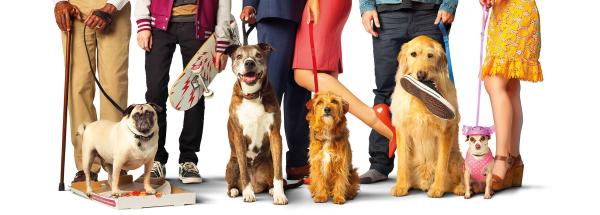 Dog Days - August 2018 Movie
