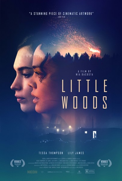 Little Woods Movie Poster
