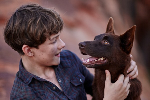 Red Dog True Blue Movie