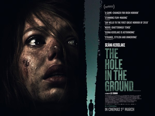 The Hole In The Ground Ireland Poster