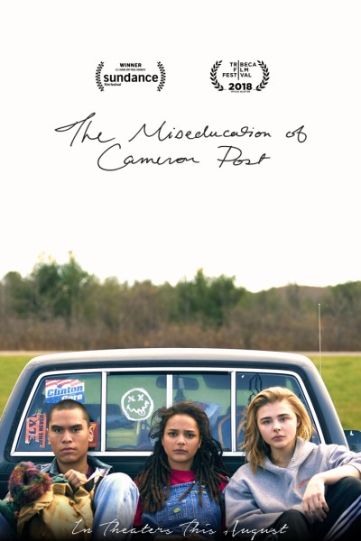 The Miseducation Of Cameron Poster