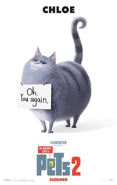 The Secret Life Of Pets 2 Movie Chloe Poster - Oh you again!