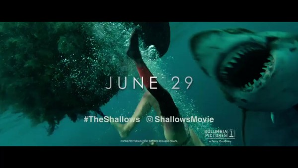 The Shallows - Shark