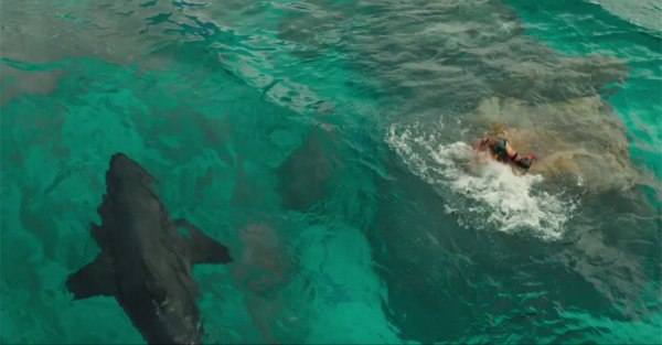 The Shallows film - Shark and girl on a rock