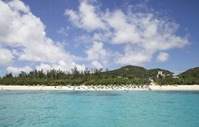 無人島に自分以外5人といくなら誰を選ぶ?圧倒的に・・・