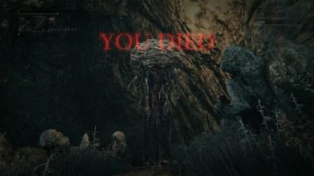 脳みそ 悪夢の辺境 ブラッドボーン Bloodborne