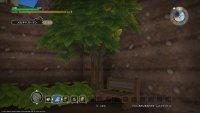 【DQB】ブナの苗が木になってくれないけど、条件何かあるの?【ドラゴンクエストビルダーズ】