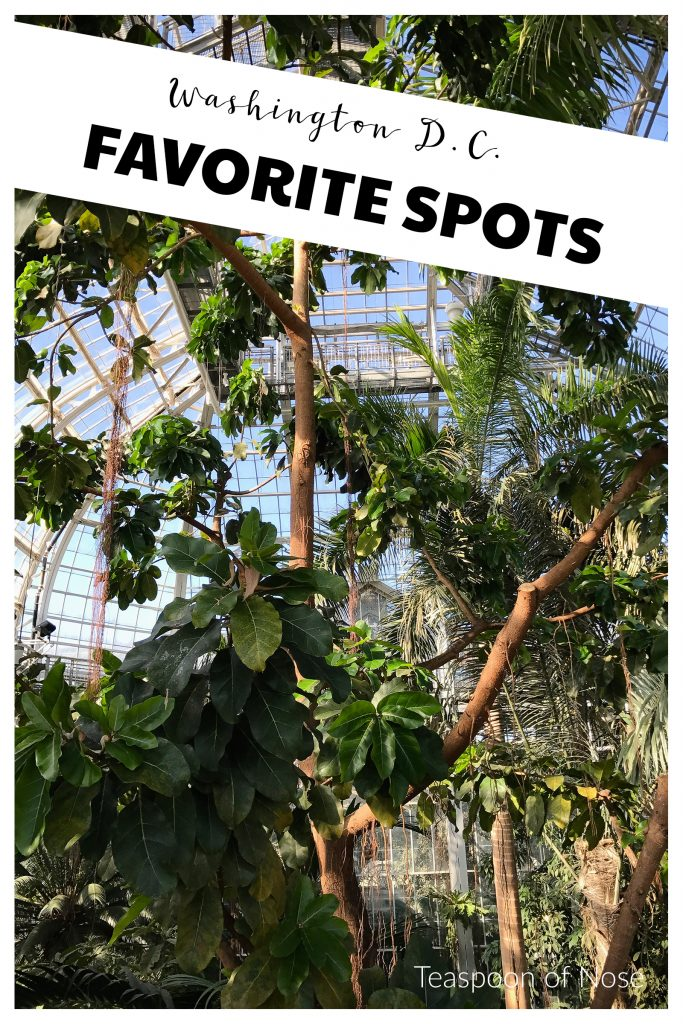 Favorite spots in D.C.! | Teaspoon of Nose