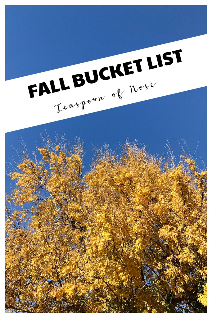 Autumn is nearly here! Here's my fall bucket list for seasonal fun and random goals! | Teaspoon of Nose