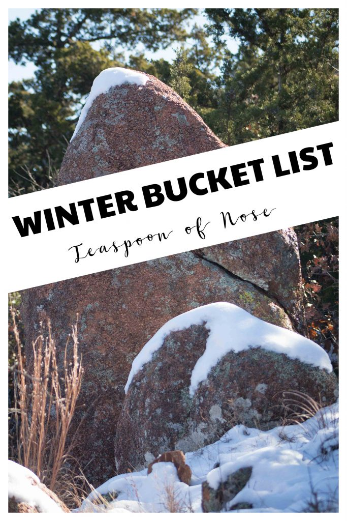 Christmas celebrations are DEFINITELY on the winter bucket list! | Teaspoon of Nose