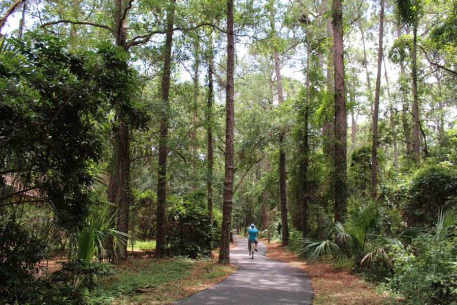 A vacation to Hilton Head Island is an idyllic little getaway!  | Teaspoon of Nose