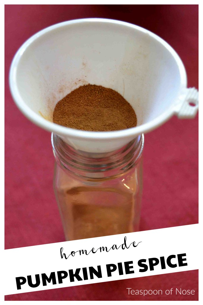 Making your own pumpkin spice is super easy! | Teaspoon of Nose
