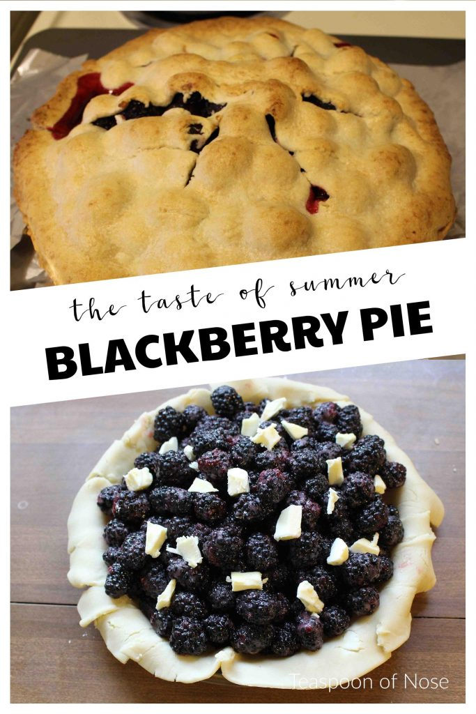 Blackberry pie is perfect for summer! | Teaspoon of Nose