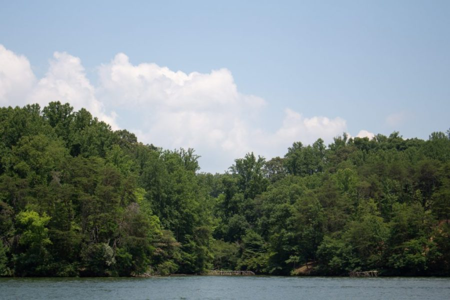 Smith Mountain Lake makes for the perfect summer weekend getaway in Virginia!   Teaspoon of Nose