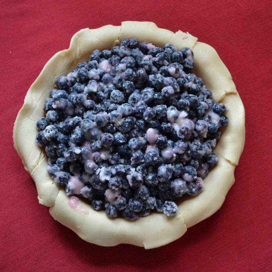 Blueberry pie is the most-baked pie in our house! | Teaspoon of Nose