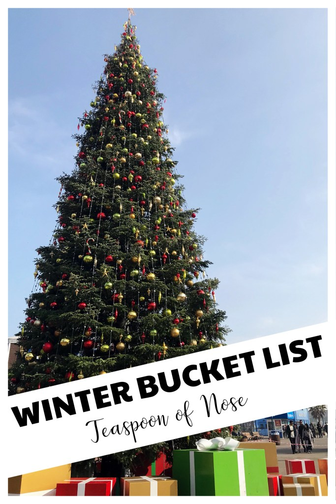 Winter Bucket List - chock full of fun for the cold weather! Holidays, New Years, and winter!