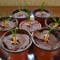 Mandrake cakes with the best chocolate cake ever