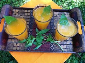 Cantaloupe Basil Aqua Fresca Fizzies