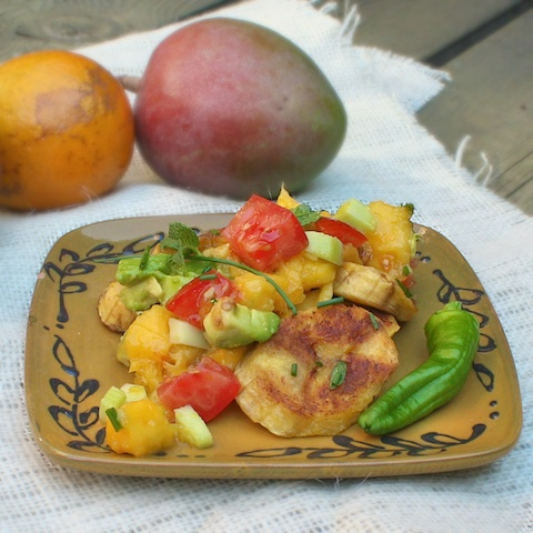 Mango Salsa & Fried Plantains