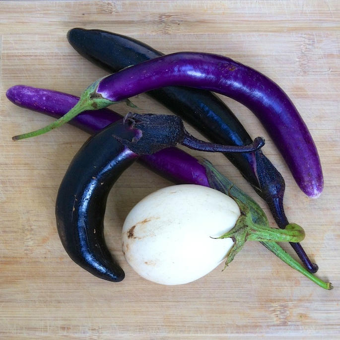 Penne with Almond Pesto & Eggplant   Teaspoonofspice.com
