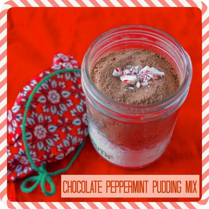 Chocolate Peppermint Pudding Mix | Teaspoonofspice.com