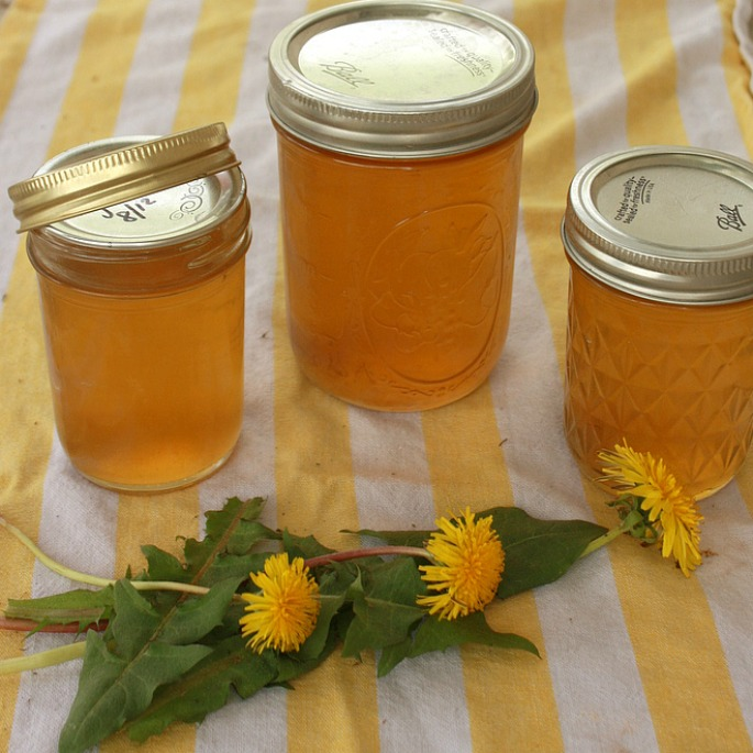 Tastes like honey! Impossibly easy to make: DANDELION JELLY