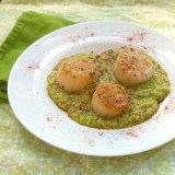 Seared Scallops with Fava Bean Puree