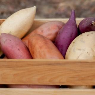 Sweetpotato Chutney | The Recipe ReDux