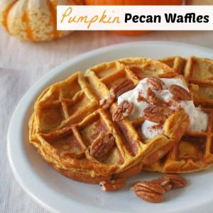 Pumpkin Pecan Waffles   Teaspoonofspice.com