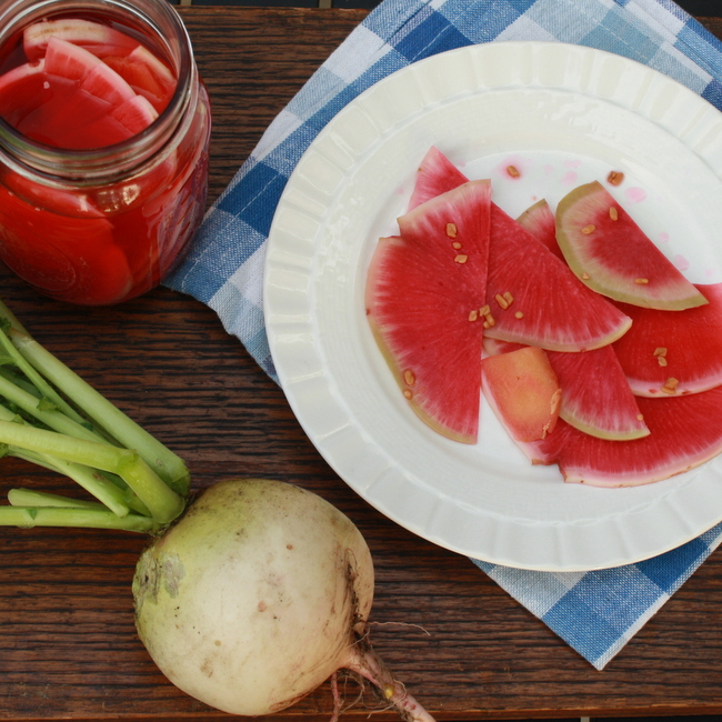 Quick Radish Pickles | @TspCurry