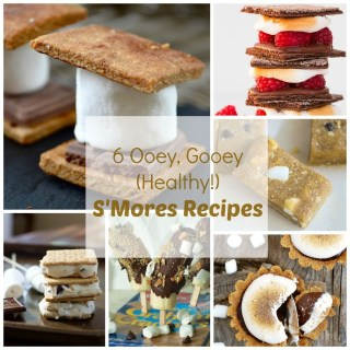 Chocolate. Marshmallow. Graham Cracker: Best S'Mores Recipes | TeaspoonOfSpice.com