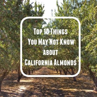 Top 10 Cool Things I Learned About California Almonds (like how you get them out of the tree!) @tspbasil