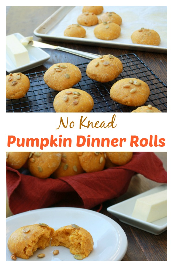 Pillowy-soft rolls. Perfect for the holidays or any day time is tight: No Knead Pumpkin Dinner Rolls | @tspcurry