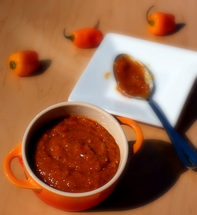 13 Drool-Worthy and Better for You Barbecue Sauces + Marinades: Sweet & Spicy Habanero BBQ Sauce