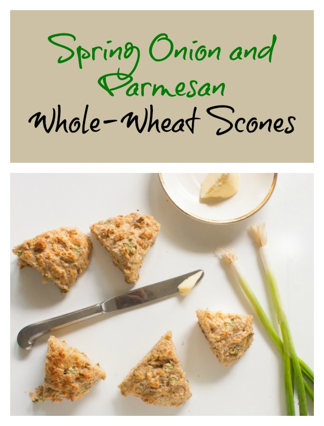 Buttery and flaky and great for picnics: Spring Onion & Parmesan Whole Wheat Scones | @tspcurry