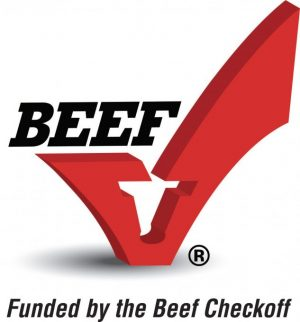 more info on beef jerky
