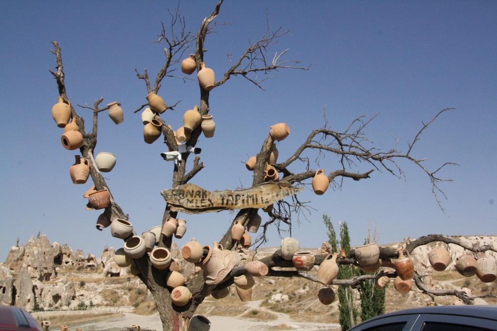 Pottetræ_cappadocia