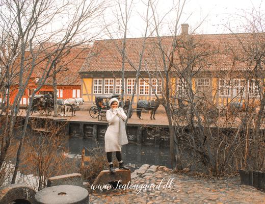 Den gamle by, museum i århus, seværdigheder i århus, rejseblog, dansk rejseblog, rejseblog århus, oplevelser i århus, museum den gamle by, botantisk have, århus museer, musejum århus, openair museum, århus,