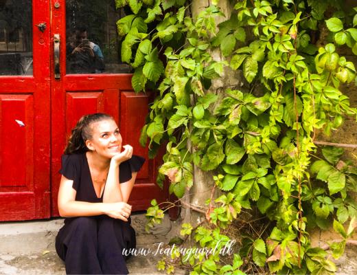 Corona virus Alanya, hjemmekarantæne alanya, dansker i Alanya, rejsebloggen tea tougaard,