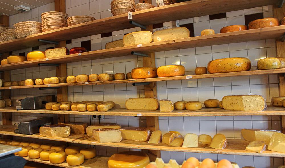Gouda ost, Bondegård i Holland, Jongenhoeve Bondegård, Gouda Jongenhoeve, Holldanske oste, Hollandsk ostebutik, Gouda Holland,