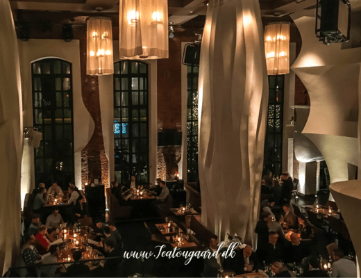 Rejseblogger madanmedelse, Danish travelblogger, danish travelblogger food review, rejseanmeldelser af Hamburg, restauranter i Hamburg, Hamburg EAST restaurant