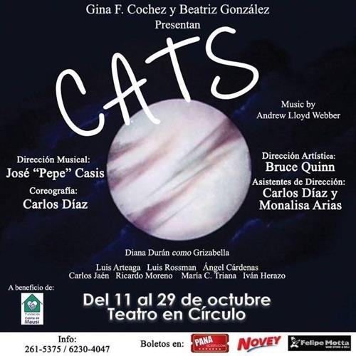 afiche-cats