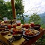 Come sano vive sano en cenit Arte Natura Minca Colombia