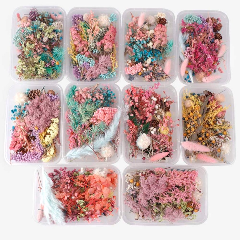 Dried Flowers for Candle Making