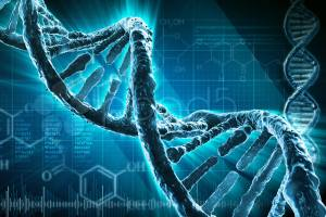 DNA as electronics components - The TeCake