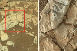 Aliens on Mars? NASA scientists find ancient fossils in image shot by Curiosity rover on Mars