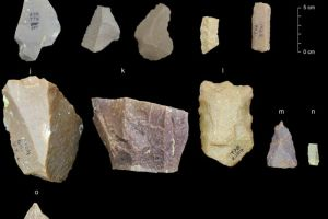 385,000 years old Stone tools