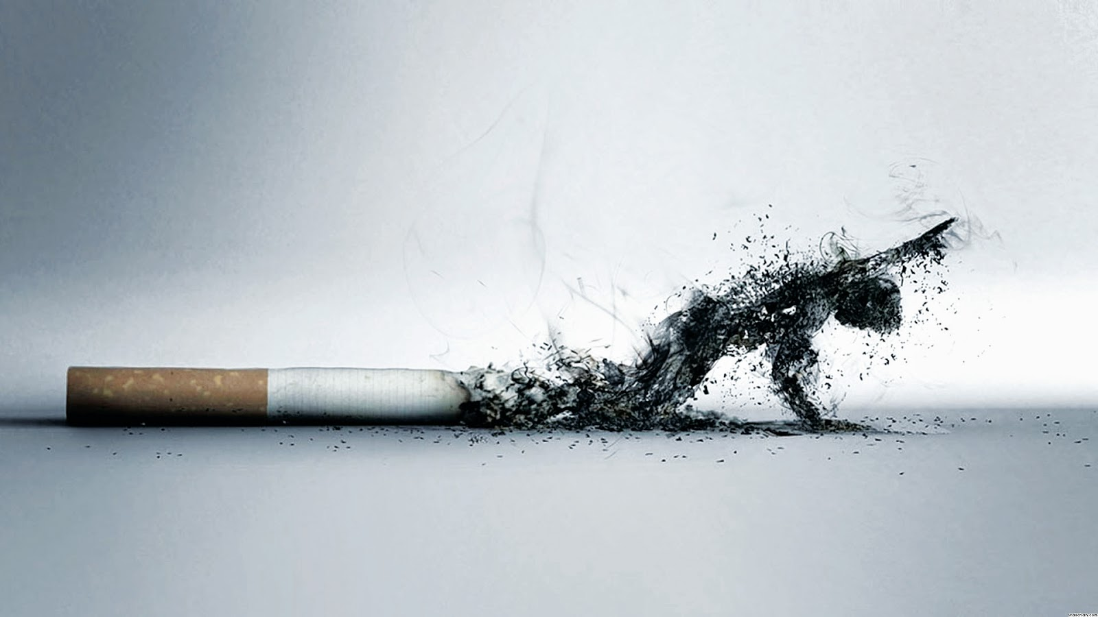 Study finds cigarette smoke also causes major harm to muscles